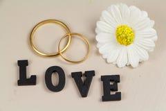 Δύο γαμήλια δαχτυλίδια στο χρυσό, το λουλούδι και την αγάπη Στοκ Εικόνες