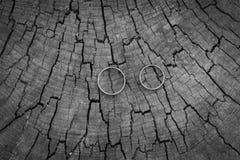 Δύο γαμήλια δαχτυλίδια στο κολόβωμα Στοκ φωτογραφία με δικαίωμα ελεύθερης χρήσης