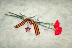 Δύο γαρίφαλα χρωμάτων, κορδέλλα του George και η διαταγή του κόκκινου αστεριού Στοκ φωτογραφίες με δικαίωμα ελεύθερης χρήσης