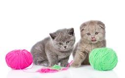 Δύο γατάκια που παίζουν με μια σφαίρα η ανασκόπηση απομόνωσε το λευκό Στοκ εικόνα με δικαίωμα ελεύθερης χρήσης