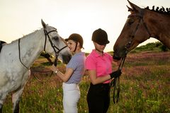 Δύο γυναίκα και δύο άλογα υπαίθριες φύση θερινού στην ευτυχή ηλιοβασιλέματος μαζί Στοκ εικόνες με δικαίωμα ελεύθερης χρήσης