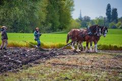 Δύο γυναίκες καθοδηγούν ένα άροτρο που τραβιέται από τα άλογα σχεδίων Στοκ εικόνα με δικαίωμα ελεύθερης χρήσης