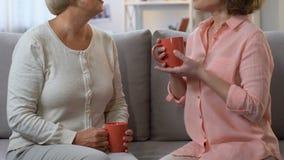 Δύο γυναίκες που πίνουν το τσάι και που μοιράζονται τη θηλυκή εμπειρία, συστάσεις για τη ζωή απόθεμα βίντεο