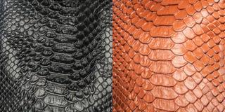 Δύο είδη λαμπρού φολιδωτού κατασκευασμένου τεχνητού δέρματος φιδιών στοκ εικόνες
