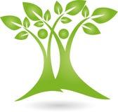 Δύο εγκαταστάσεις, δέντρα, naturopath και λογότυπο φύσης Στοκ Φωτογραφίες