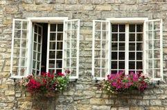δύο εκλεκτής ποιότητας Window Στοκ εικόνα με δικαίωμα ελεύθερης χρήσης