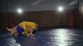 Δύο ελεύθεροι μαχητές που εκπαιδεύουν τα λακτίσματα και τις υποδοχές στη γυμναστική αργά απόθεμα βίντεο