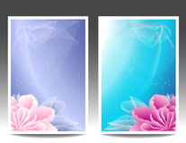 Δύο εμβλήματα ή υπόβαθρο λουλουδιών με το ρόδινο magen Στοκ Εικόνες