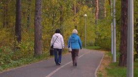 Δύο ενεργές ανώτερες γυναίκες που βγαίνουν στο πάρκο φθινοπώρου μαζί, οπισθοσκόπο απόθεμα βίντεο