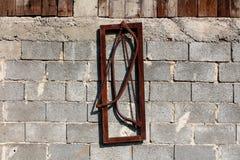 Δύο εντελώς οξυδωμένα πριόνια παλαιών χεριών για το τέμνον ξύλο με το καφετί ξύλινο πλαίσιο που τοποθετείται ως διακόσμηση στον γ στοκ φωτογραφία με δικαίωμα ελεύθερης χρήσης