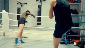 Δύο επαγγελματικοί μαχητές θερμαίνουν πρίν διαθέτουν στη θέση κοντά στο ριγκ απόθεμα βίντεο