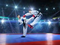 Δύο επαγγελματικοί θηλυκοί karate μαχητές είναι Στοκ φωτογραφία με δικαίωμα ελεύθερης χρήσης