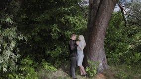 Δύο εραστές κάθονται κάτω από ένα δέντρο στον ηλιόλουστο καιρό εξετάζουν ο ένας τον άλλον και το χαμόγελο απόθεμα βίντεο