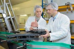 Δύο εργαζόμενοι στα παλτά εργαστηρίων στη διαδικασία γαλακτοκομικής παραγωγής Στοκ φωτογραφίες με δικαίωμα ελεύθερης χρήσης