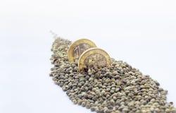 Δύο ευρο- νομίσματα ένα με τους σπόρους μιας κάνναβης Στοκ Εικόνες