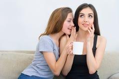 Δύο ευτυχείς φίλοι που μιλούν και που πίνουν τον καφέ και το τσάι και που κουτσομπολεύουν Στοκ εικόνα με δικαίωμα ελεύθερης χρήσης