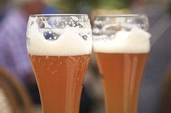 Δύο εύγευστες μπύρες Στοκ Εικόνες