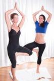 Δύο ελκυστικές γυναίκες που κάνουν το workout τους Στοκ εικόνα με δικαίωμα ελεύθερης χρήσης