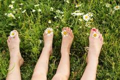 Δύο ζευγάρια των ποδιών με τα λουλούδια μαργαριτών σε πράσινο Στοκ εικόνα με δικαίωμα ελεύθερης χρήσης