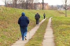 Δύο ηλικιωμένοι άνθρωποι περιλαμβάνονται στο Σκανδιναβικό περπάτημα στο πάρκο σε πλαϊνό στη μέση των δέντρων Ενεργός τρόπος ζωής  στοκ εικόνες