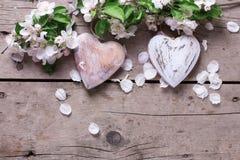 Δύο διακοσμητικά καρδιές και λουλούδια δέντρων μηλιάς εκλεκτής ποιότητας σε ξύλινο Στοκ Εικόνα