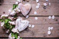 Δύο διακοσμητικά καρδιές και λουλούδια δέντρων μηλιάς Στοκ Φωτογραφία