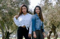 Δύο καλύτεροι φίλοι γυναικών πέρα από το υπόβαθρο πάρκων ημερησίως του φθινοπώρου στοκ φωτογραφία με δικαίωμα ελεύθερης χρήσης