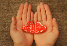 Δύο καρδιές στους φοίνικες Στοκ εικόνες με δικαίωμα ελεύθερης χρήσης