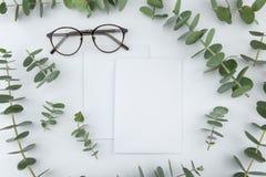 Δύο κενά άσπρα κάρτες και γυαλιά Στοκ εικόνες με δικαίωμα ελεύθερης χρήσης