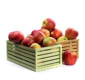 Δύο κιβώτια των μεγάλων ώριμων κόκκινων μήλων Στοκ Φωτογραφία