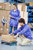 Δύο κινεζικοί εργαζόμενοι στην αποθήκη εμπορευμάτων στοκ φωτογραφία με δικαίωμα ελεύθερης χρήσης