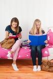 Δύο κορίτσια εφήβων που κάνουν την εργασία από κοινού στοκ φωτογραφίες με δικαίωμα ελεύθερης χρήσης