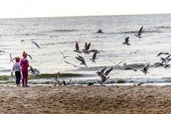 Δύο κορίτσια που ταΐζουν seagulls Στοκ Φωτογραφίες