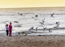 Δύο κορίτσια που ταΐζουν seagulls Στοκ φωτογραφία με δικαίωμα ελεύθερης χρήσης
