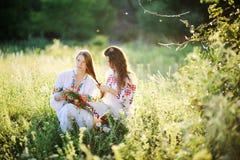 Δύο κορίτσια στην ουκρανική εθνική συνεδρίαση φορεμάτων στη χλόη κορίτσι Στοκ Εικόνες