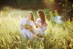 Δύο κορίτσια στην ουκρανική εθνική συνεδρίαση φορεμάτων στη χλόη κορίτσι Στοκ εικόνα με δικαίωμα ελεύθερης χρήσης