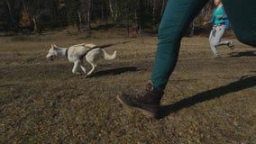 Δύο κορίτσια φίλων που περπατούν τον αγώνα τους πολύ απόθεμα βίντεο