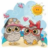 Δύο κουκουβάγιες στην παραλία ελεύθερη απεικόνιση δικαιώματος
