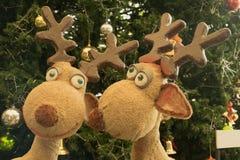 Δύο κούκλες ταράνδων μπροστά από το χριστουγεννιάτικο δέντρο Στοκ Εικόνες