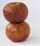 Δύο κόκκινα ιταλικά μήλα ένα σε άλλο Στοκ Εικόνες