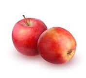 Δύο κόκκινα μήλα σε μια άσπρη ανασκόπηση Στοκ Φωτογραφίες