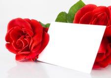 Δύο κόκκινα τριαντάφυλλα και κενή κάρτα δώρων για το κείμενο στο άσπρο υπόβαθρο Στοκ εικόνα με δικαίωμα ελεύθερης χρήσης