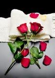 Δύο κόκκινα τριαντάφυλλα μαζί με τα κόκκινα πέταλα σε ένα μαύρο υπόβαθρο Στοκ Εικόνα