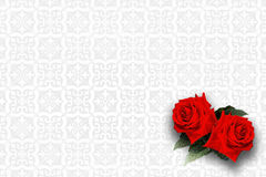 Δύο κόκκινα τριαντάφυλλα στο άσπρο υπόβαθρο σχεδίων Στοκ Φωτογραφία