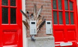 Δύο κόκκινες πόρτες στην πρόσοψη του σπιτιού με τα φτερά birf Μεγάλο flowerpot οδών με τις πράσινες εγκαταστάσεις Ανατολική πλευρ στοκ εικόνες