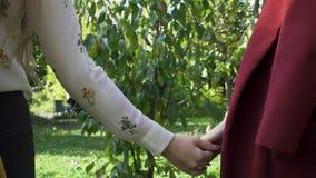 Δύο λεσβία, νέα κορίτσια που κρατά τα χέρια και που περπατά στο πράσινο, πάρκο φθινοπώρου, έννοια LGBT Samesex, όμορφη λεσβία στοκ φωτογραφία