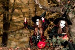Δύο μάγισσες στο δάσος, έννοια αποκριών Στοκ Εικόνες