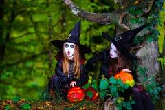 Δύο μάγισσες στο δάσος, έννοια αποκριών Στοκ Φωτογραφίες