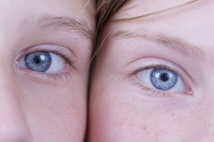 Δύο μάτια νέων κοριτσιών, εξετάζουν τη κάμερα, παιδιά πορτρέτου, μακροεντολή, στο εσωτερικό Στοκ φωτογραφίες με δικαίωμα ελεύθερης χρήσης
