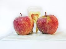 Δύο μήλα και ένα artficial δόντι Καλές υγείες της Apple Στοκ Εικόνα